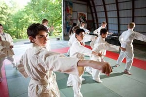 <p>Karate club in the <i>Mori no Ike Dojo</i> (training hall).</p>