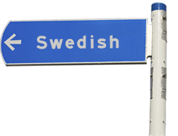 Swedish Language Village