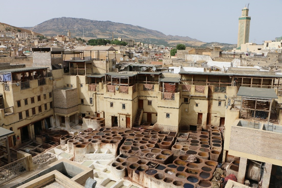 A view of the fez Medina, with a minaret and hills in the background